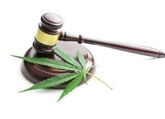 Marihuana - delegalizacja