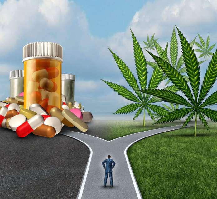 Marihuana, lecznicze właściwości