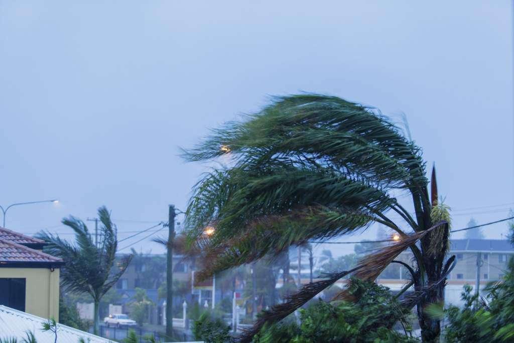 efekt-motyla-huragan.jpg