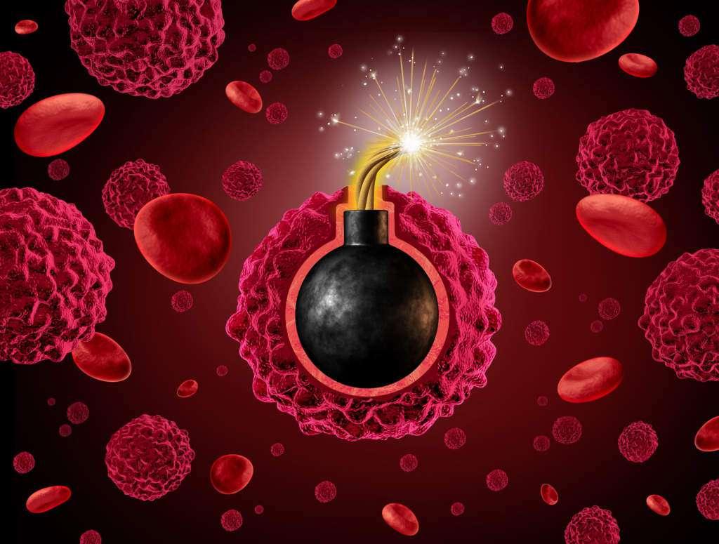 komórki-rakowe.jpg