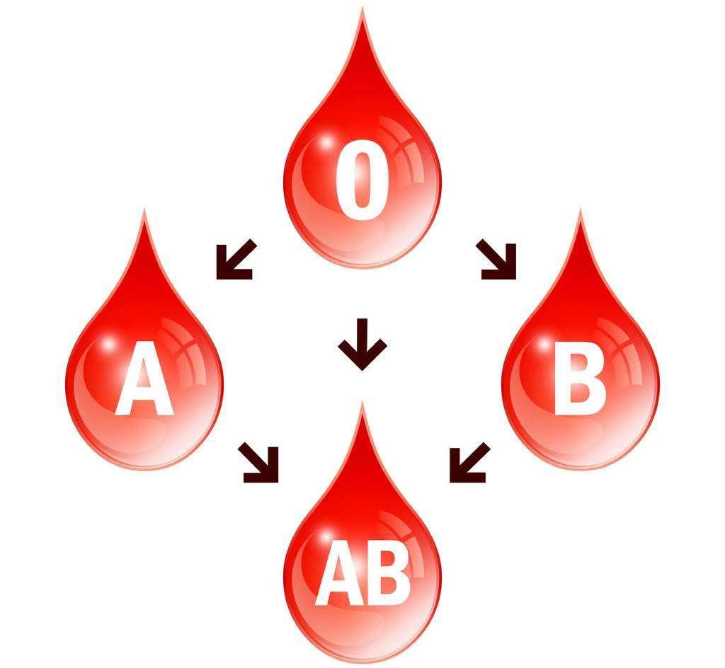 grupy-krwi-ojcostwo.jpg