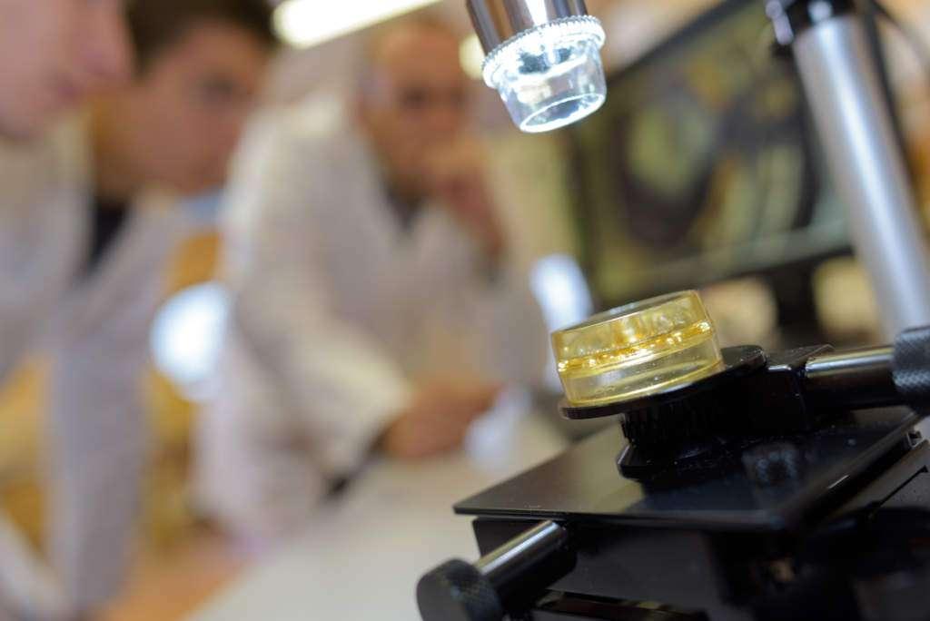 badanie-pod-mikroskopem-choroba-morgellonów.jpg