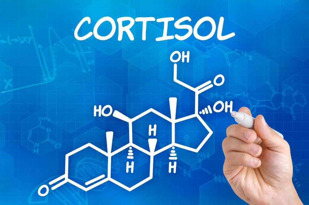 kortyzol-wzór-chemiczny.jpg