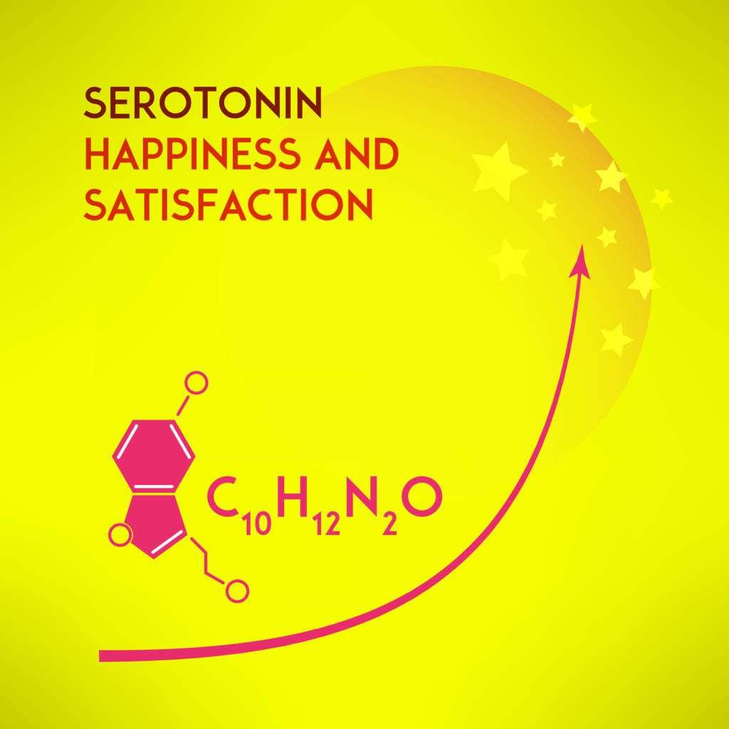 lit-serotonina.jpg