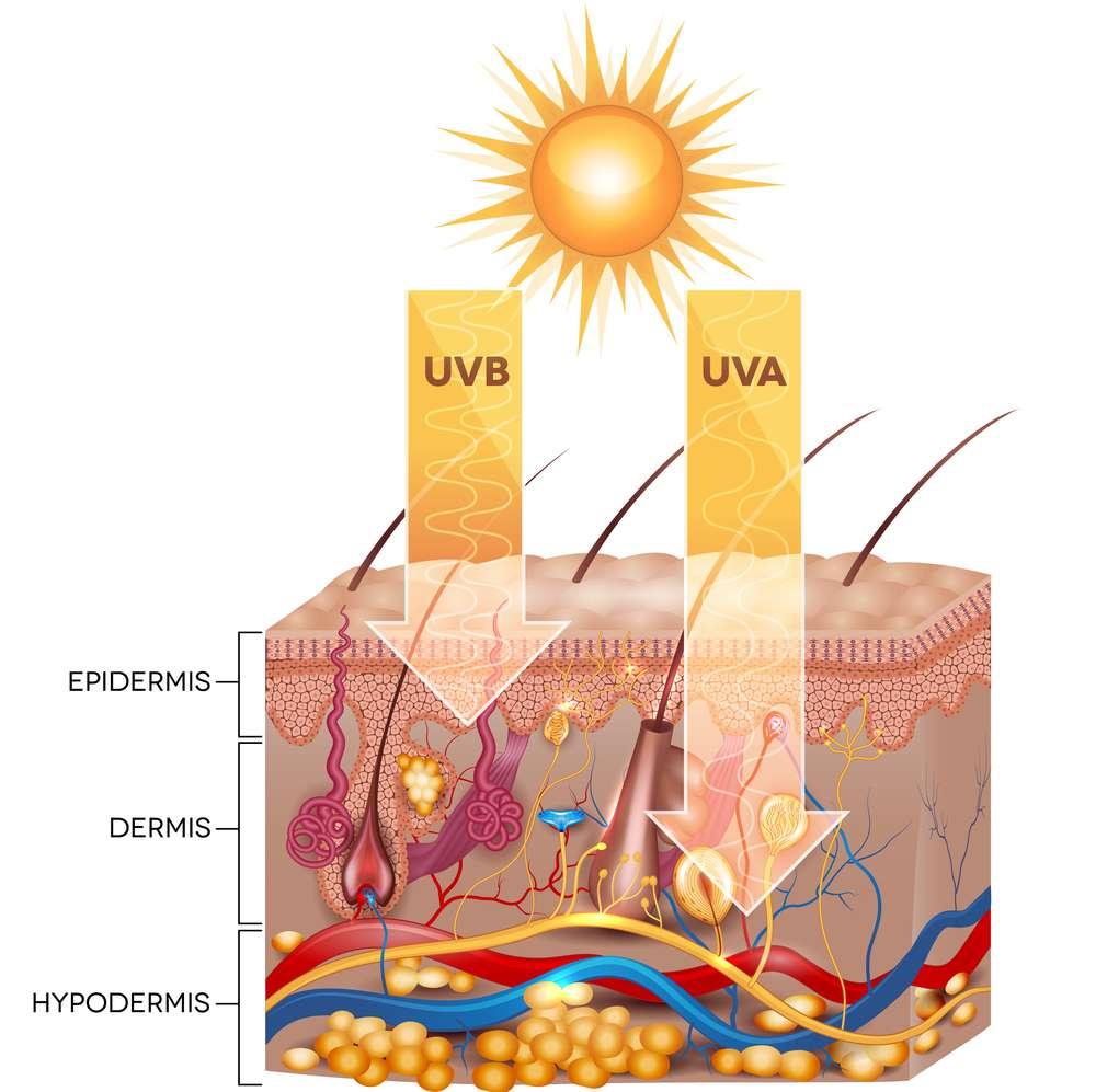 UVB-i-UVA.jpg