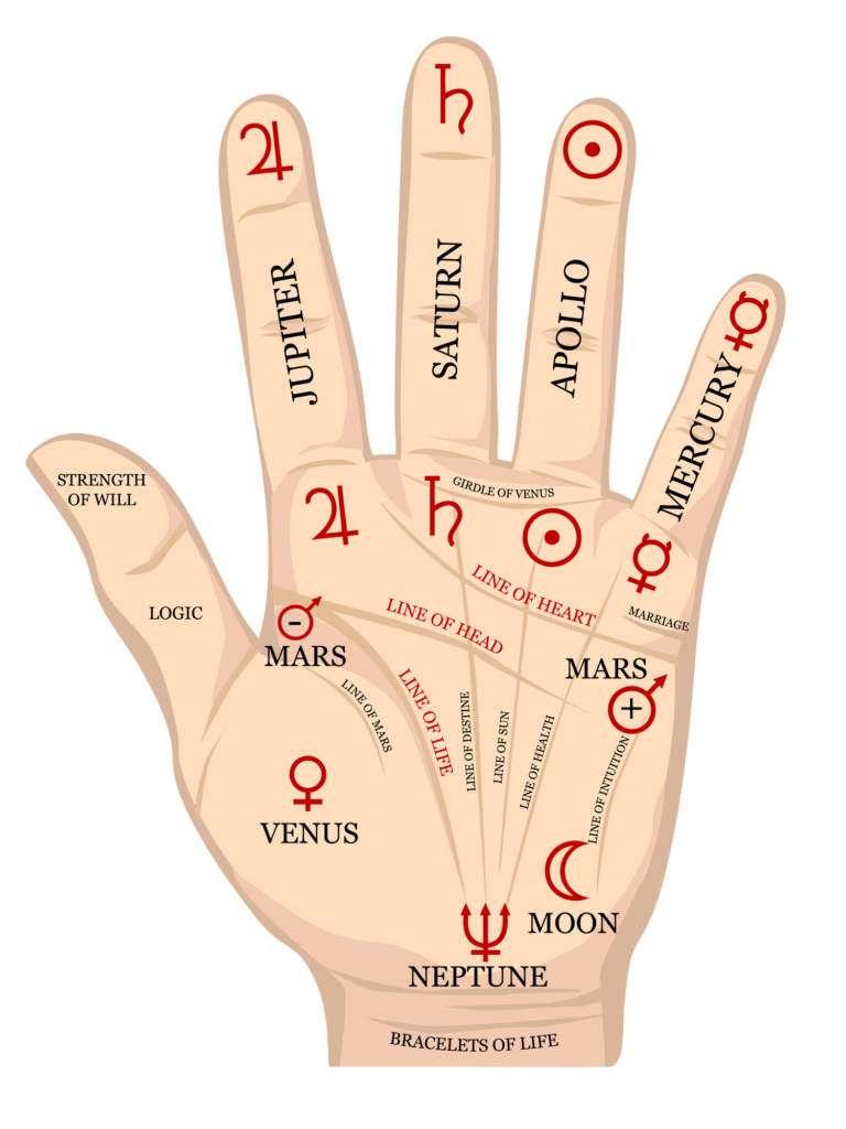 ręka.jpg