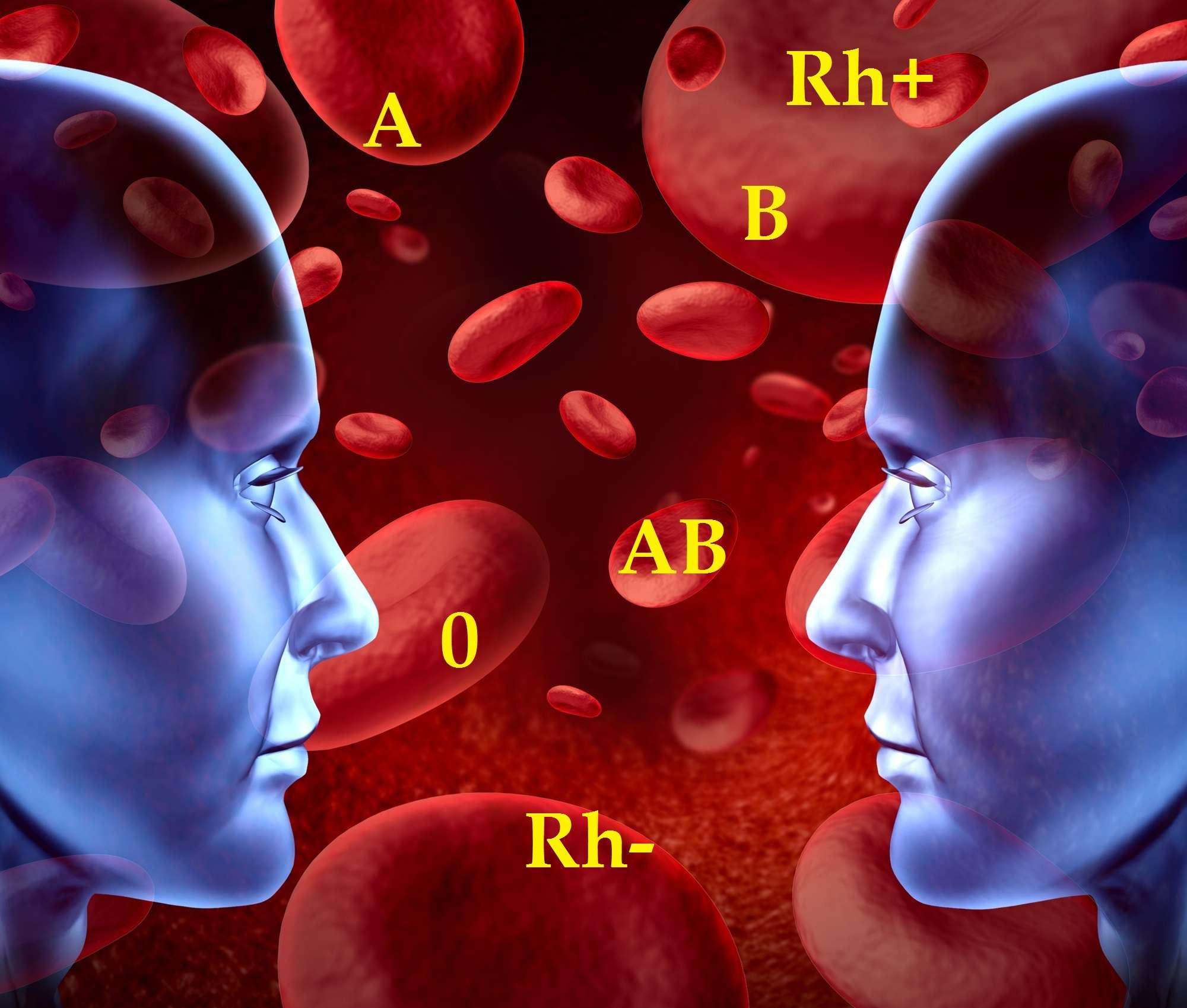 Kojarzenie przez grupę krwi