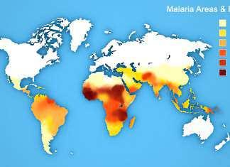 choroby-z-tropików.jpg