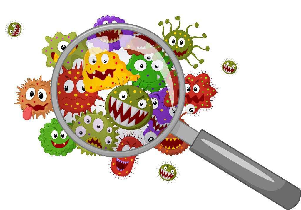 bakterie-wirusy.jpg