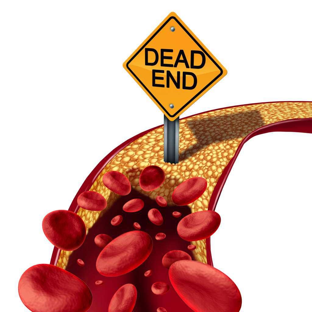 aronia-cholesterol.jpg