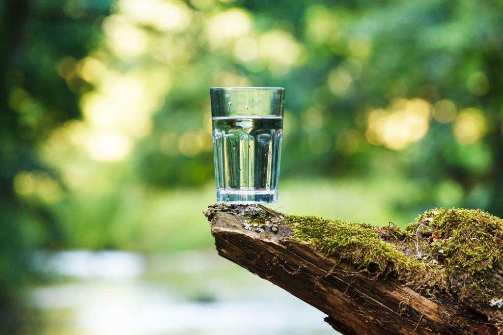 Figurka-Kalpa-Vigraha-szklanka-wody.jpg
