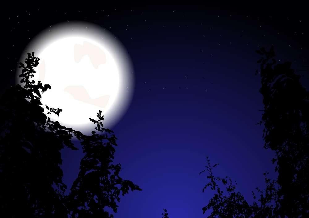 drewno-księżycowe.jpg