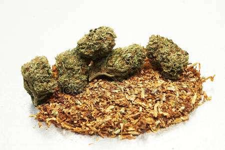 marihuana-z-tytoniem.JPG