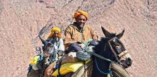 berberowie.jpg