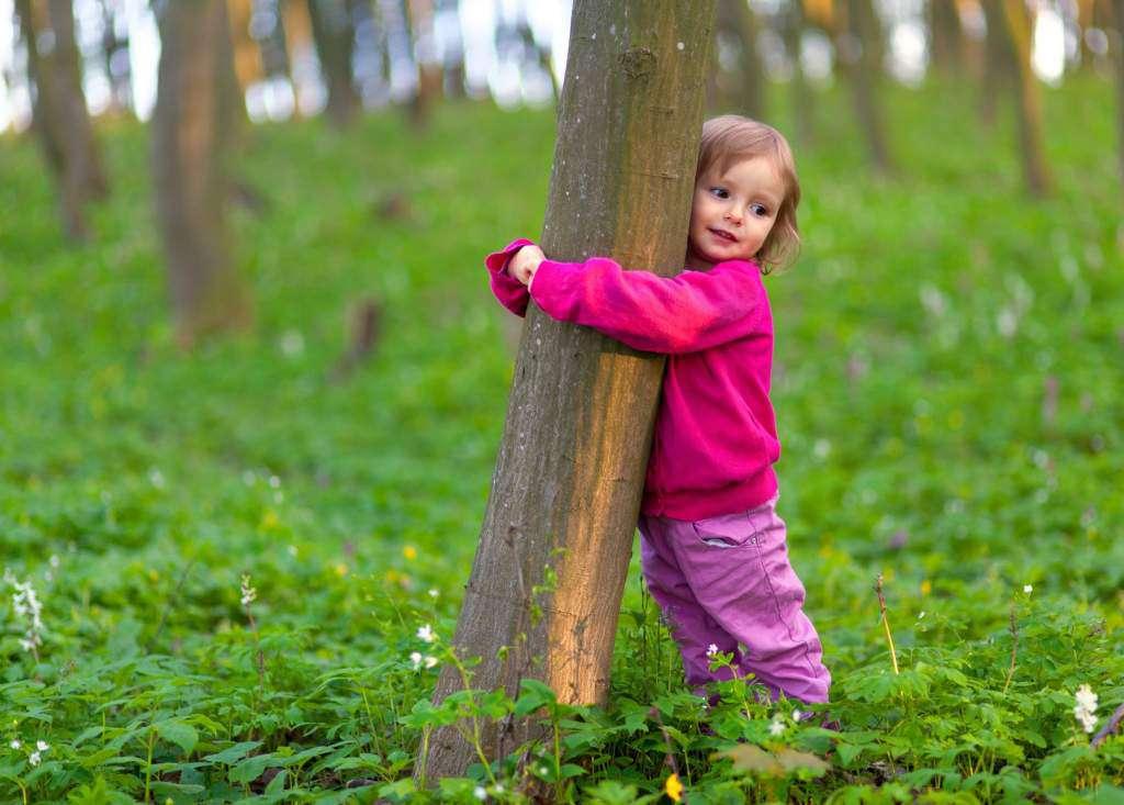 przytulanie-drzew.jpg