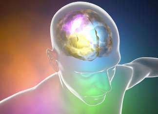 synchronizacja-półkul-mózgowych.jpg