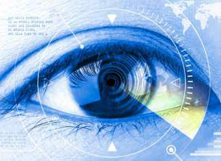 oko-ciekawostki.jpg