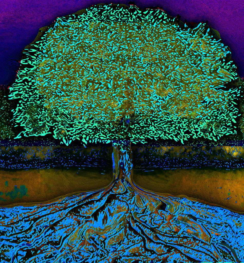 drzewo-życia.jpg