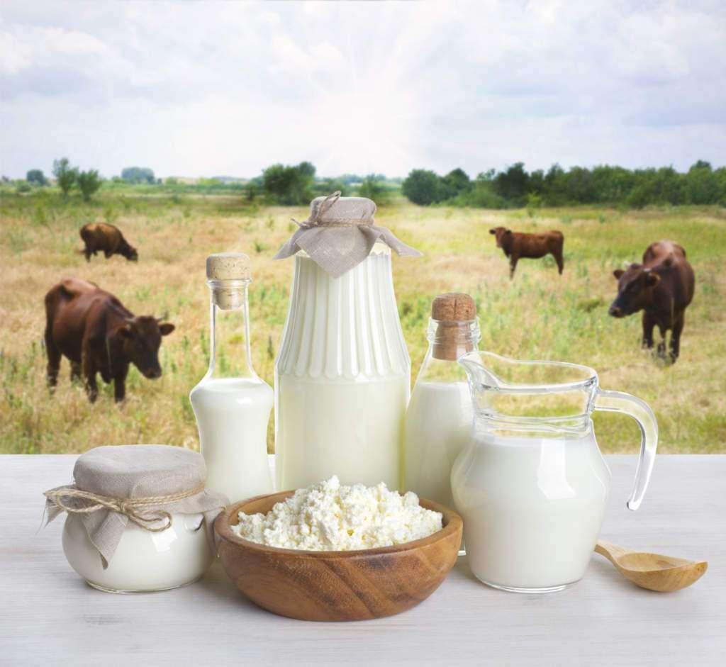 mleko-nabiał.jpg