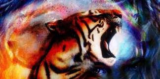 zwierzęta-rozwój-duchowy.jpg