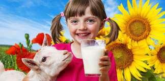mleko-kozie.jpg