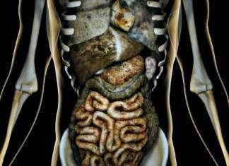 zatruty-organizm.jpg