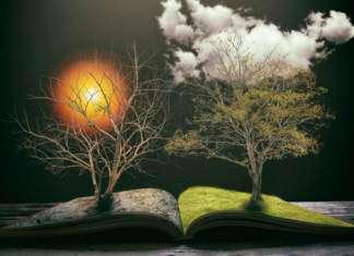 tybetańska-księga-życia.jpg