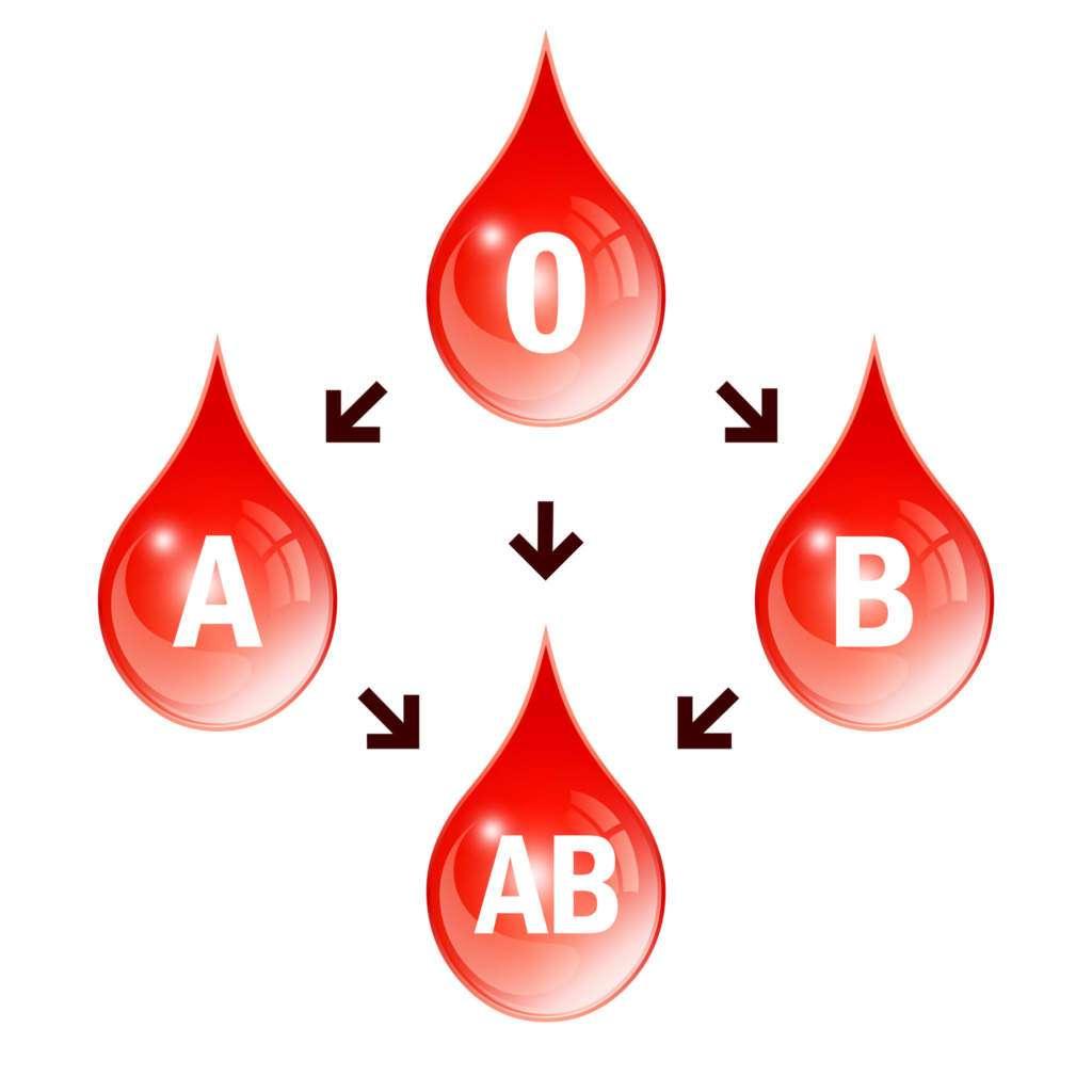 krew-bombay.jpg