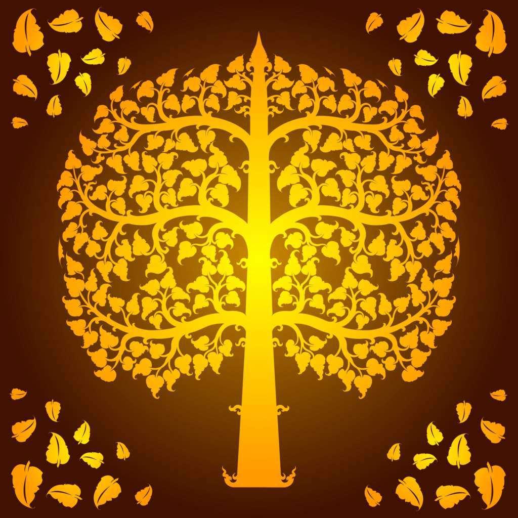 drzewo-lipa.jpg
