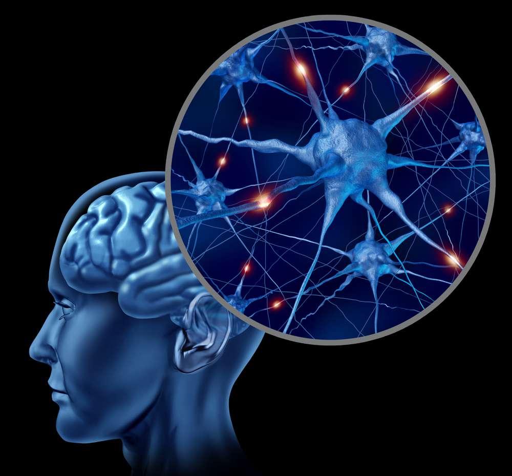 narzekanie-neurony.jpg
