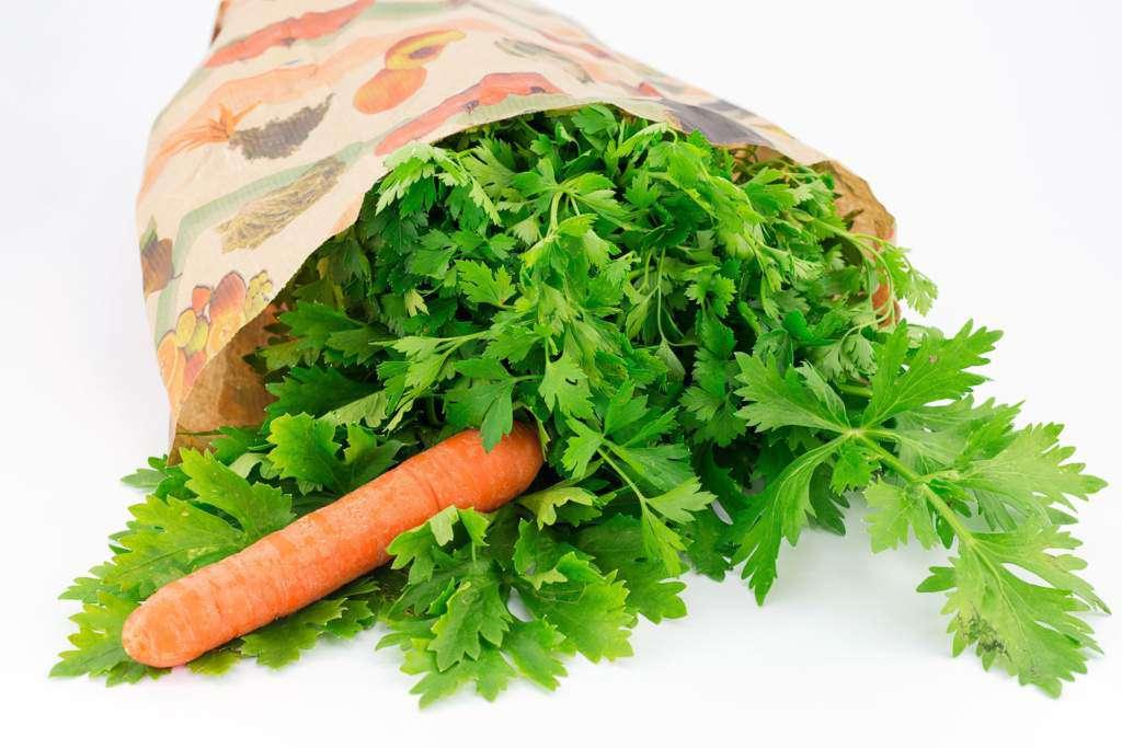 warzywa-zioła.jpg