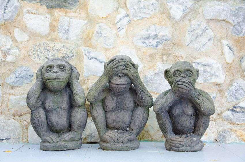 trzy.małpki.jpg