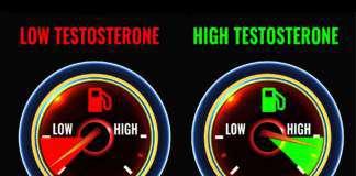 libido-testosteron.jpg