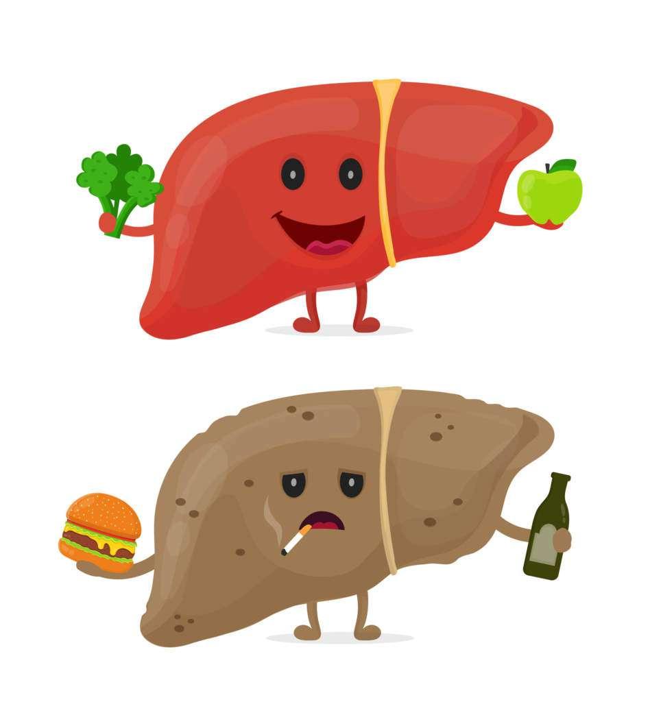 wątroba-dieta.jpg