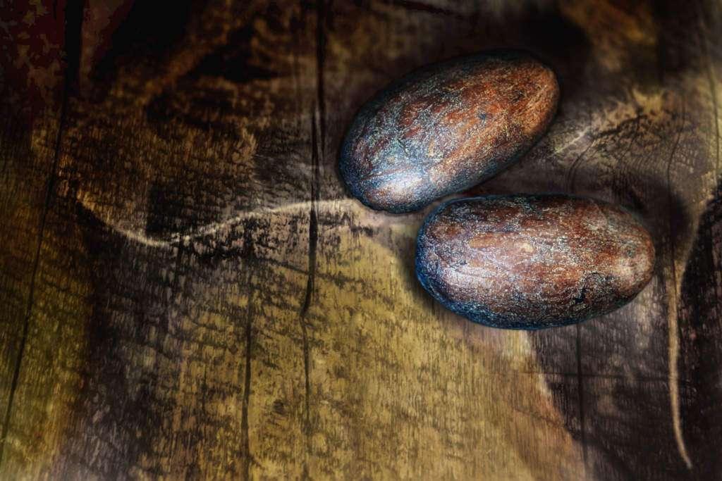 kakao-criollo.jpg