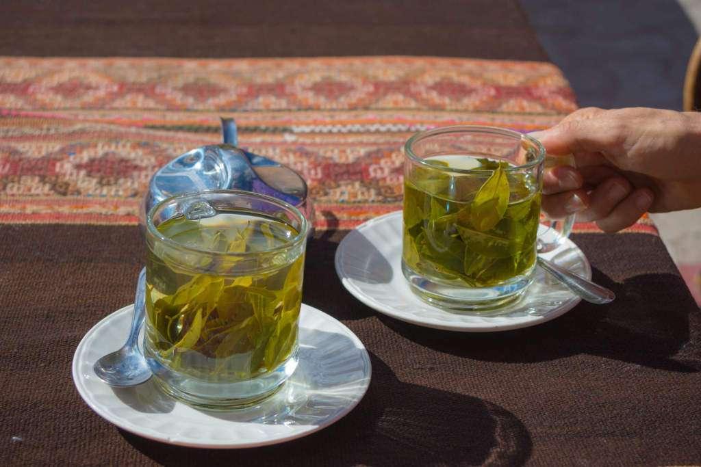 herbata-liście-koki.jpg