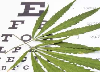 układ-endokannabinoidowy.jpg