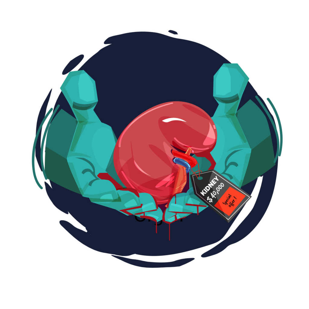 handel-organami.jpg