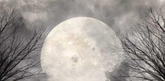 księżyc-pełnia.jpg