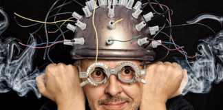mózg-w-naczyniu.jpg