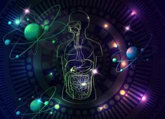 totalna-biologia.jpg