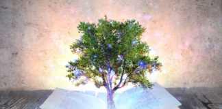 drzewo-życzeń.jpg