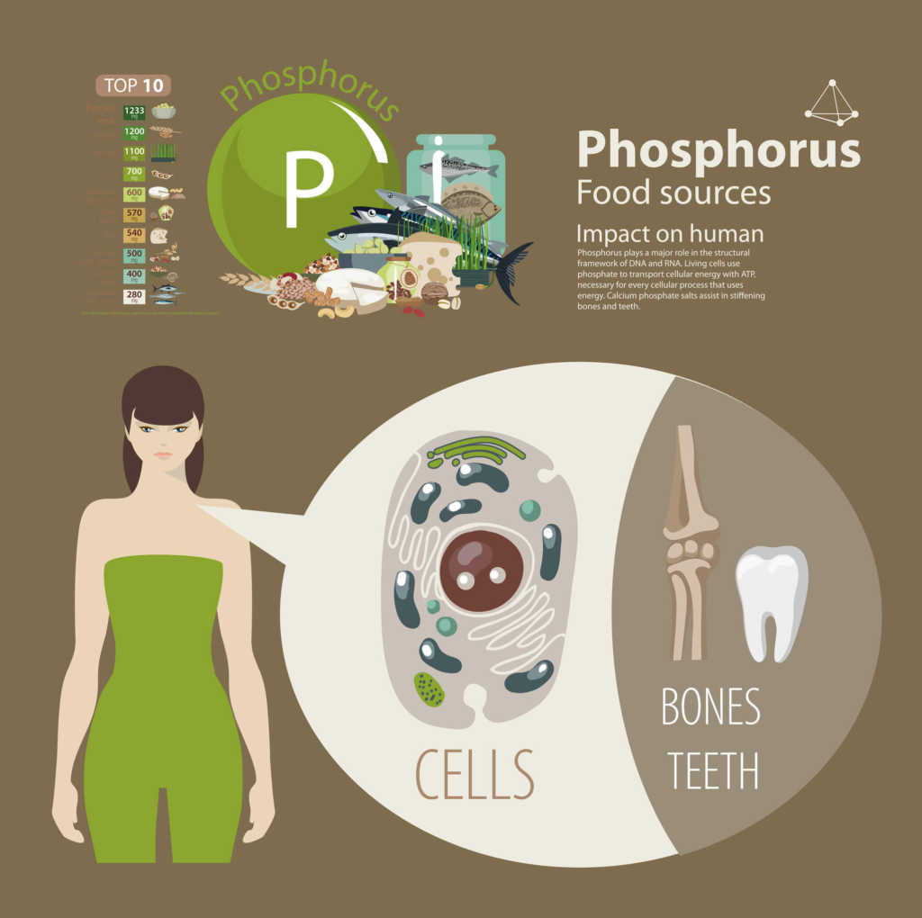 fosfor.jpg