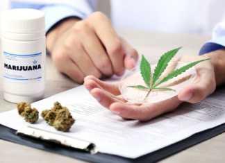 medyczna-marihuana-lublin.jpg