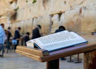 ambasador-biblia-izrael.jpg