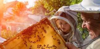 rozmowy-z-pszczołami.jpg