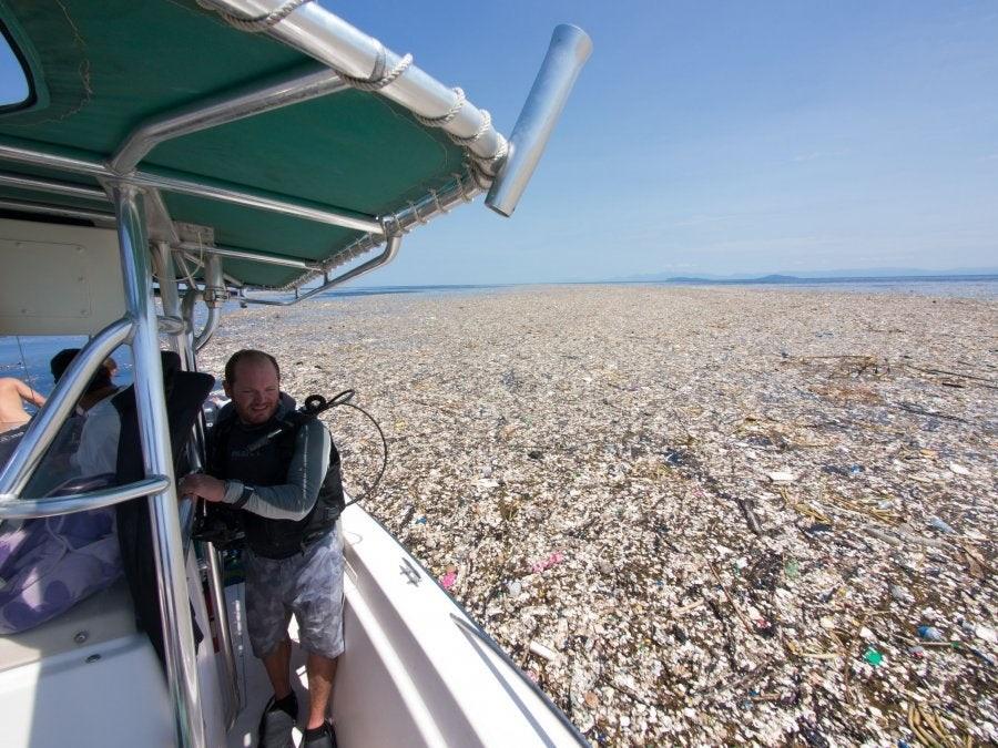 morze-plastiku.jpg