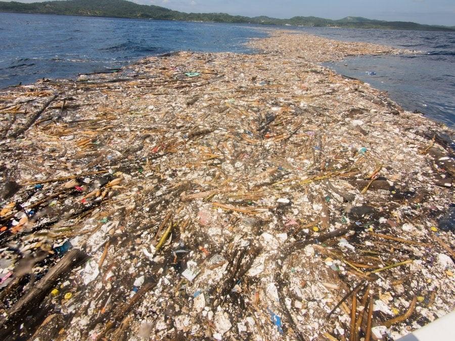 śmieci-karaiby.jpg