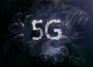 sieć-5G-broń.jpg
