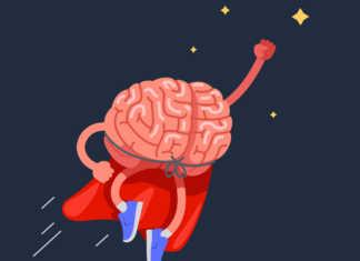 zioła-zwiększające-aktywność-mózgu.jpg